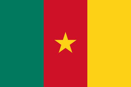 Cameroon Emoji Flag