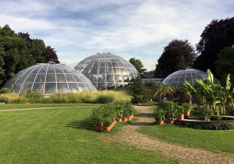 Botanical Garden in Zurich