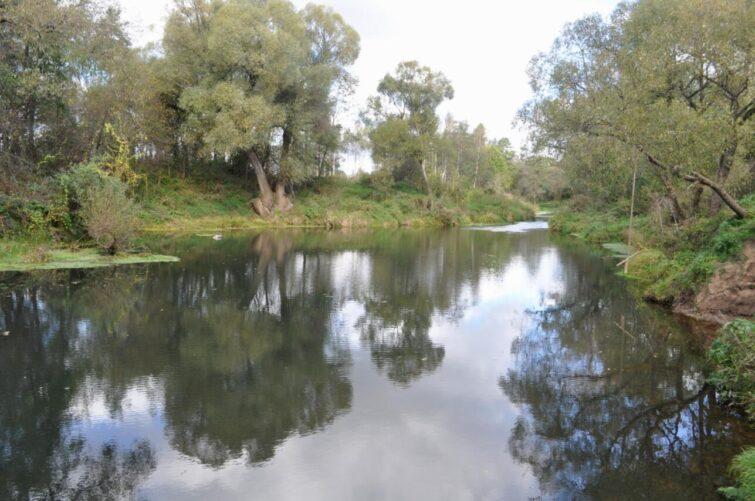 Sukhodrew river, Kaluga region