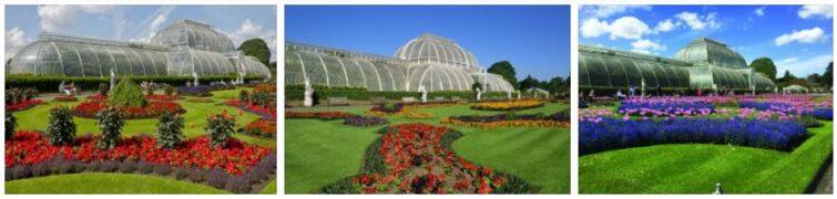 Royal Botanic Gardens of Kew